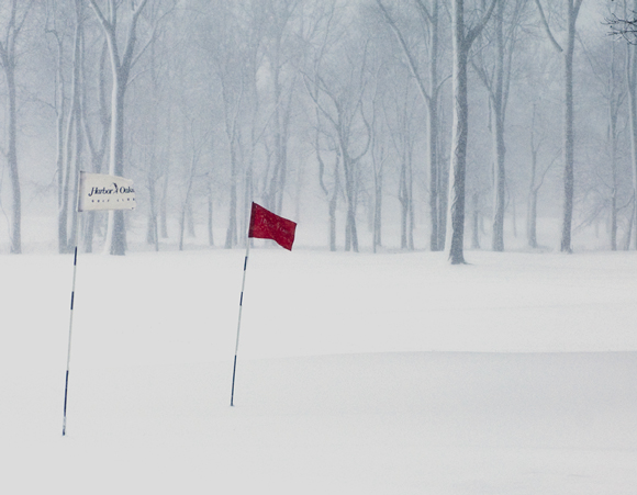harbor oaks golf club putting green in snow